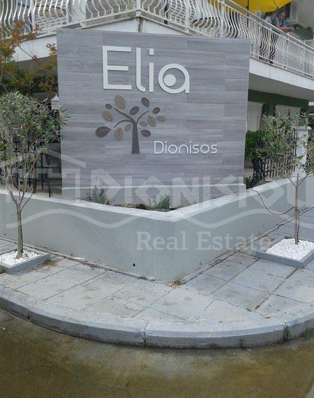 EliaApartment-1