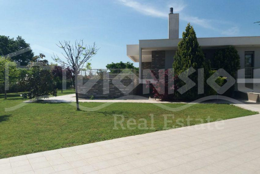 AgiosMamas865-10